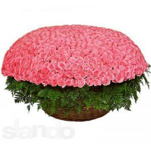 тысяча роз в корзине