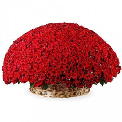 тысяча одна красная роза в корзине