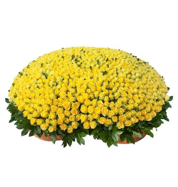 тысяча и одна желтая роза в корзине