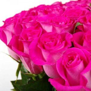 🌹 Харьковская роза