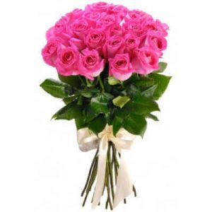 розовые голландские розы букет