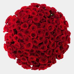 🌹 101 роза