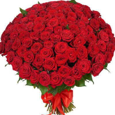 красивые красные розы в букете