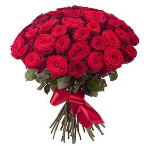 🌹 51 роза