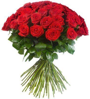 двадцать пять красных роз