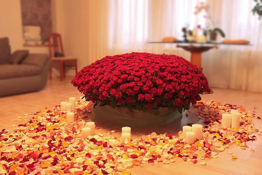 красная роза тысяча одна