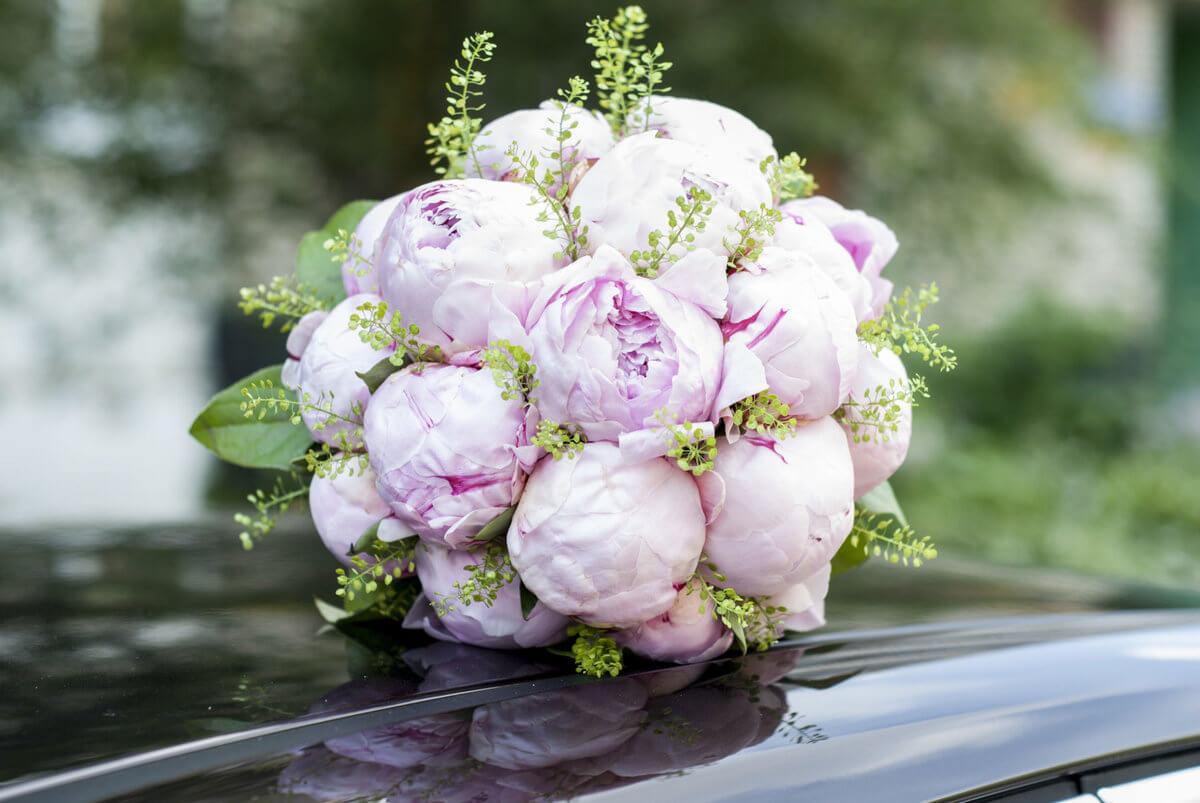 букет для невесты из пионов