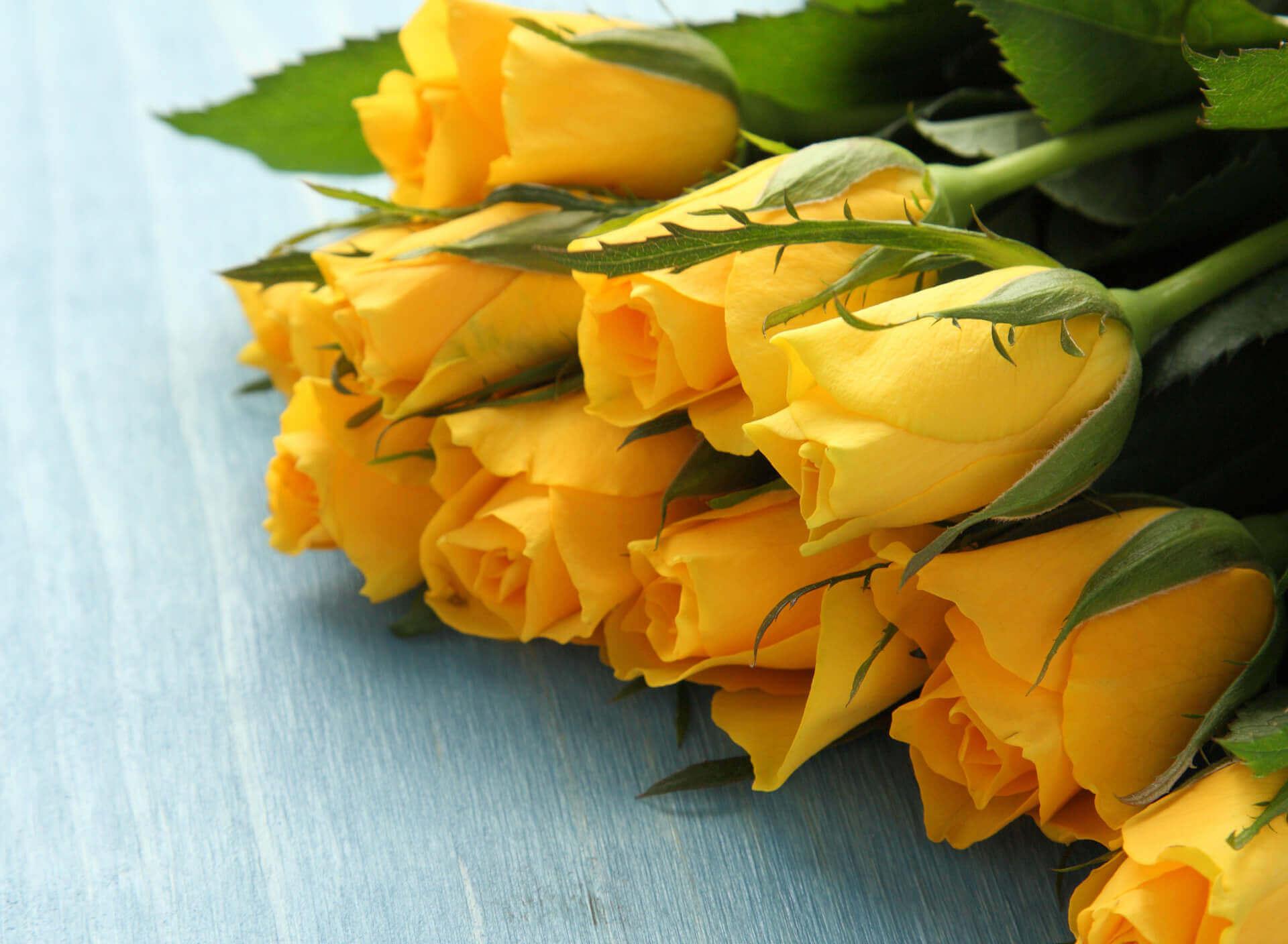 красивый букет желтых роз