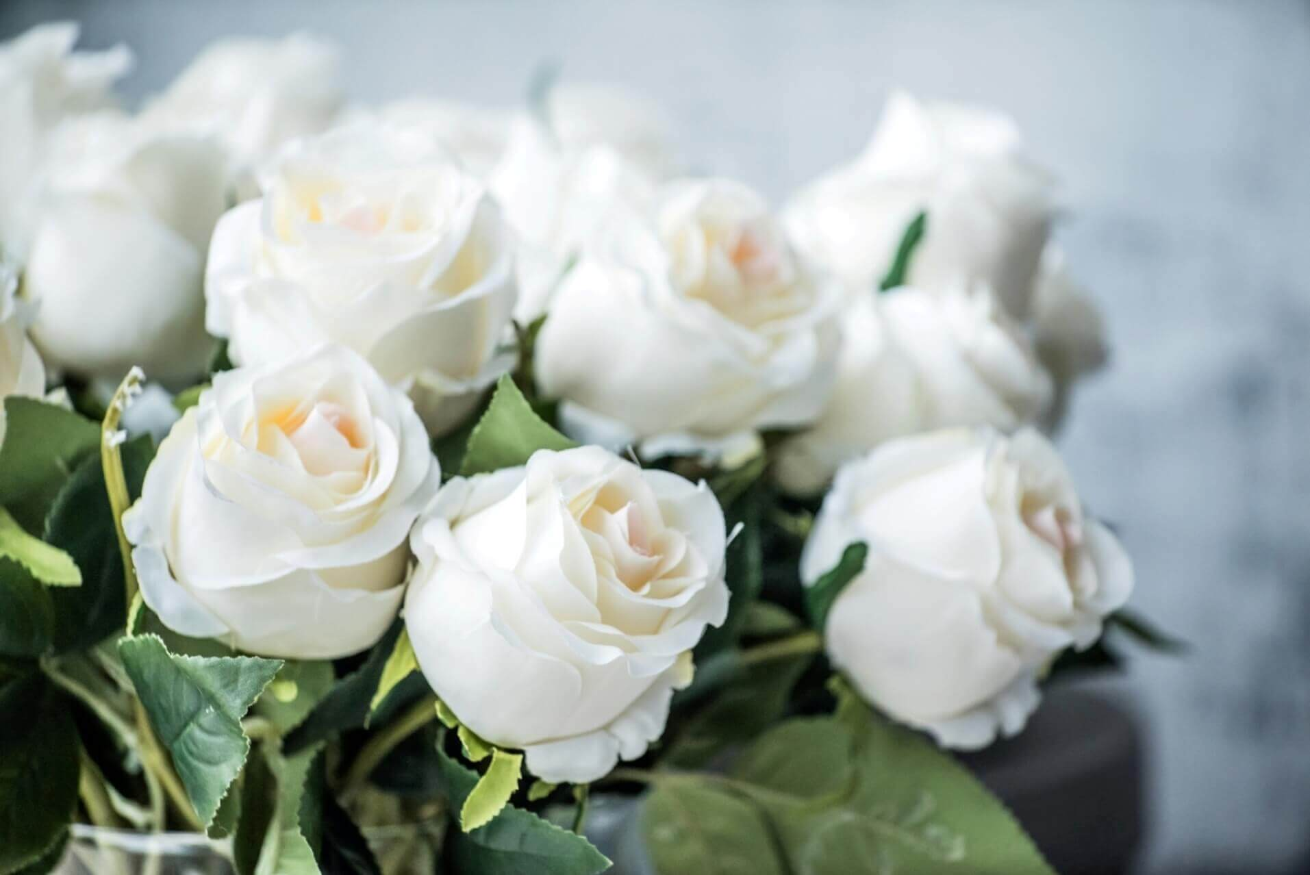 Красивый букет белых роз